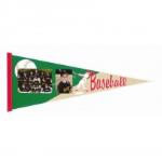 Baseball Pennant in cases of 50